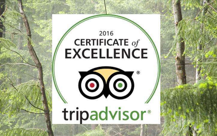 ZIPTREK EARNS 2016 TRIPADVISOR CERTIFICATE OF EXCELLENCE
